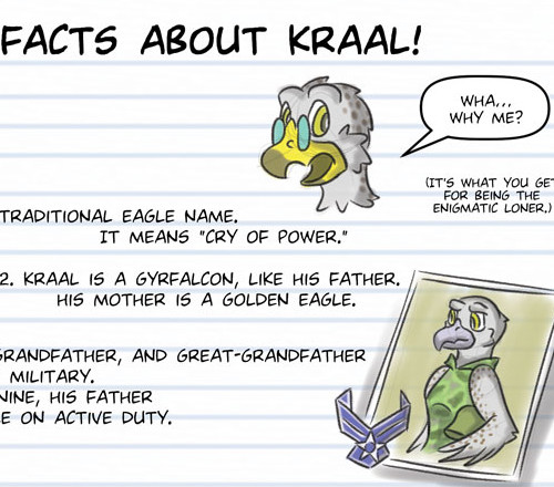 10 Facts About Kraal